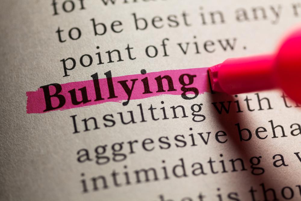 A Boy Named Bully