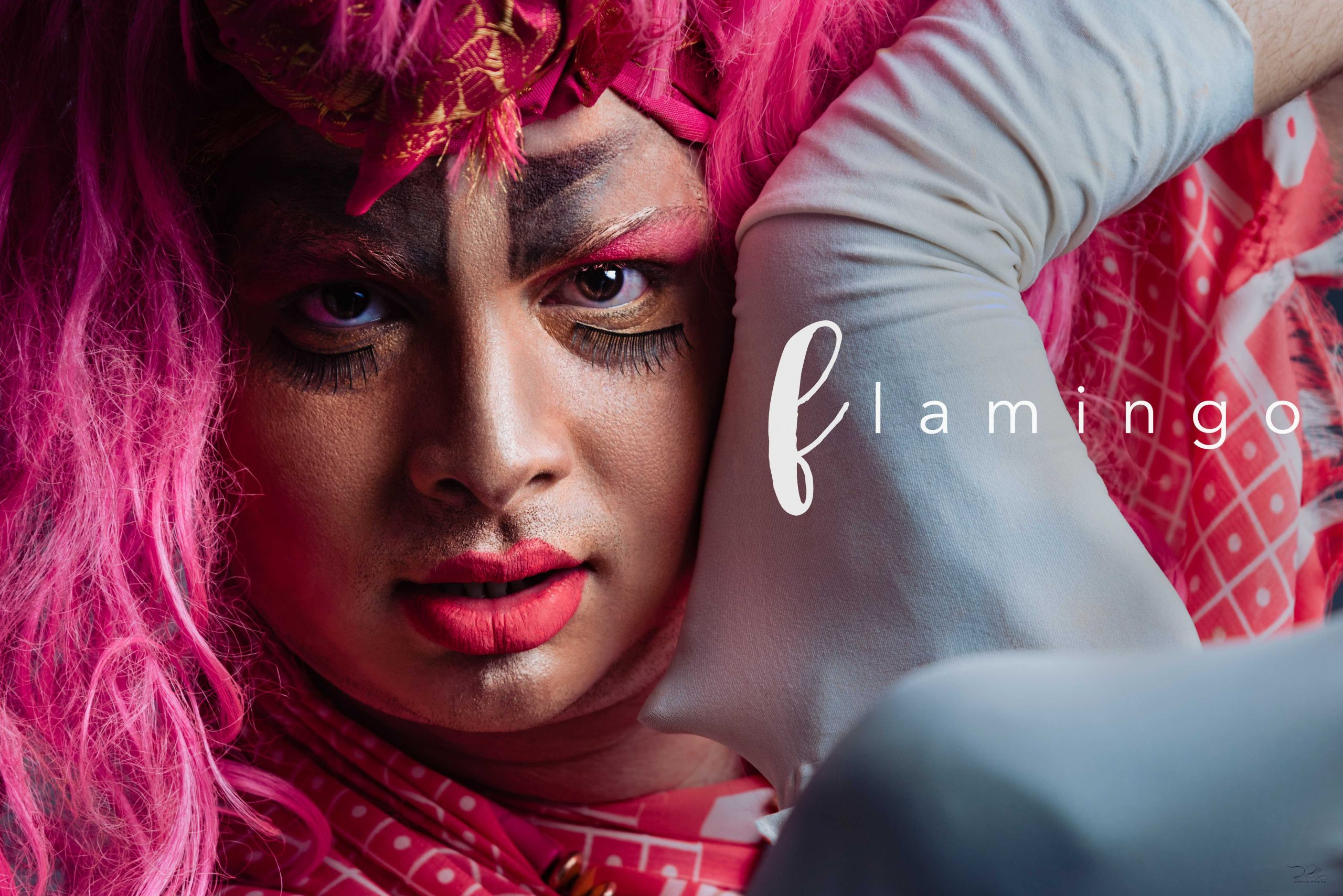 Pink Flamingo, A Photo Series To Create Awareness On Pomosexuality